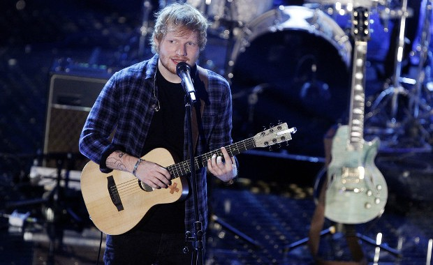 Ed Sheeran Concert (photo : Andrea Raffin / Shutterstock.com)